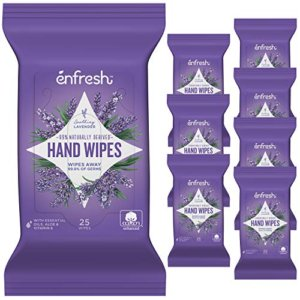 Enfresh Hand Wipes 8pc